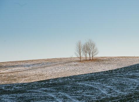 Winterlandschaft durch ca Tauben